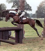 Sophie eventing at Osberton and coming in first on 'Sansome Surprise'